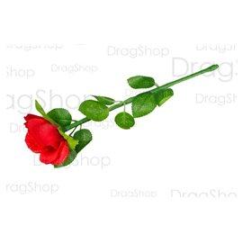 Регенерирующая роза