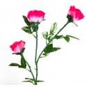 Три светящиеся розы