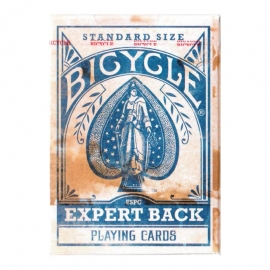 Bicycle Expert Back Blue